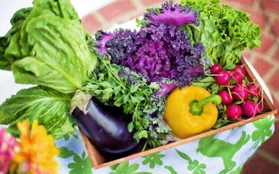 Spis sundt uden at blive ruineret