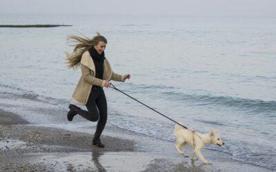 Motioner sammen med din bedste ven