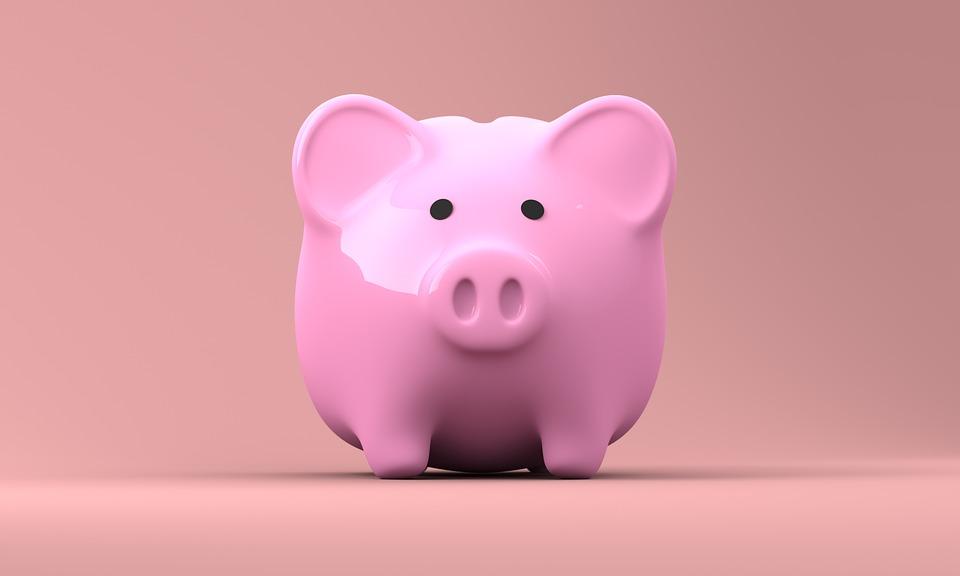 Penge gris med penge til fornøjelser