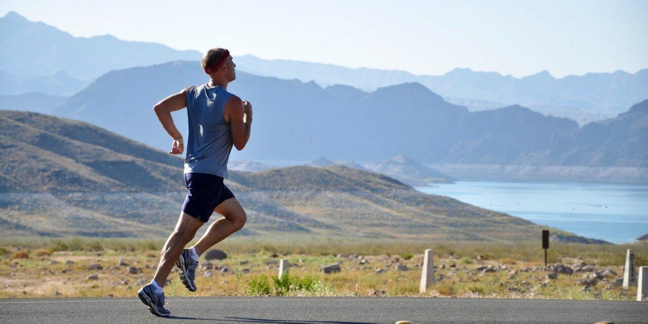 Dyrk motion i hverdagen