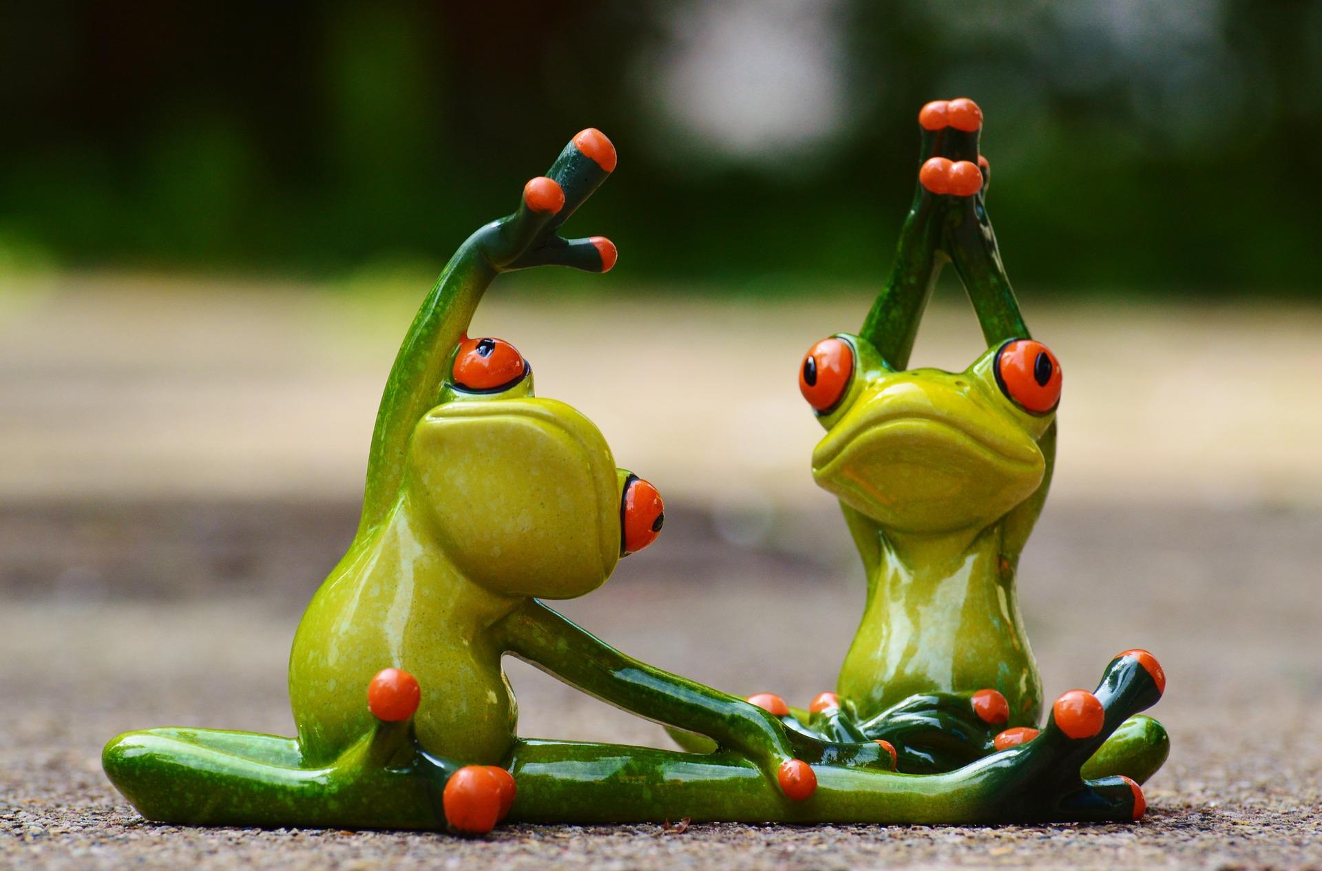 Frøer dyrker yoga