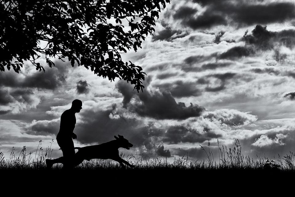 hund og mand