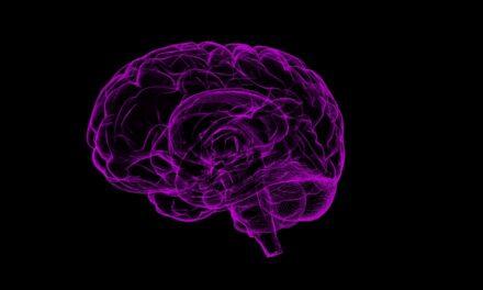 Husk at motionere din hjerne