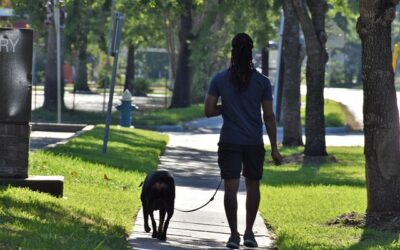 Sjov motion med din bedste ven