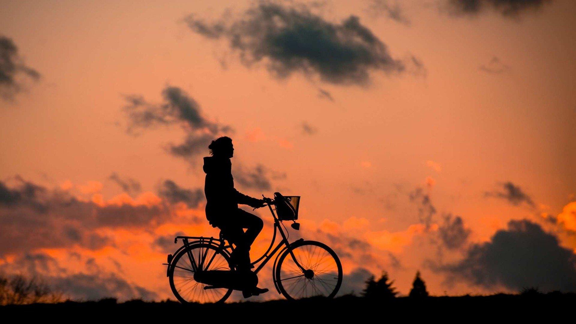 Cykel i hverdagen