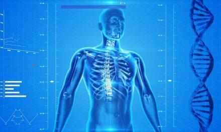 Kort om fysioterapi